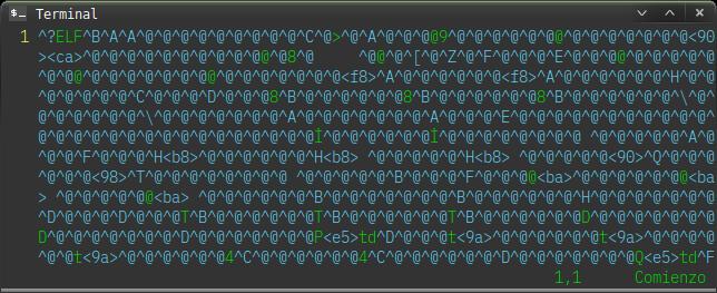 Parchear archivo binario de dwm con xxd y HT Editor   GUTL